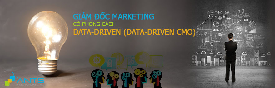 The Data-Driven CMO